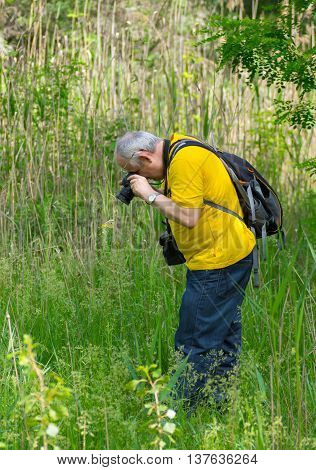 Mature photographer taking a photo of butterfly