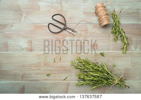 Rosemary for planting with garden tools on wooden table. Top view with copy space