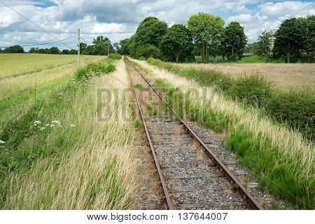 An overgrown railway line in the UK