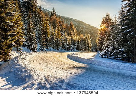 winter mountain landscape. winding road that leads into the spruce forest covered with snow at sunrise