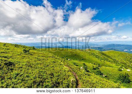 Path Through Hillside In High Mountains