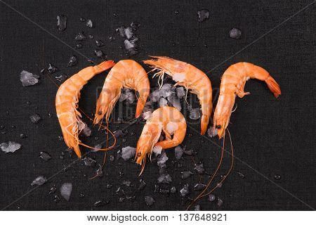 Fresh orange shrimp on ice on black table top view. Culinary seafood eating.
