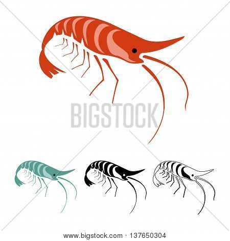 Vector illustration of shrimps: cooked shrimp, fresh shrimp, tattoo style shrimp and outline shrimp. It can be used for restaurant menu, tattoo salons and icons.