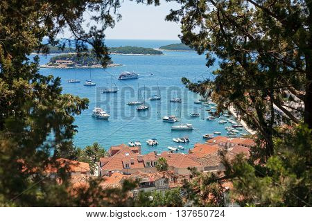 Hvar harbor framed by foliage in Croatia
