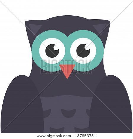 cute owl animal icon isolated vector illustration
