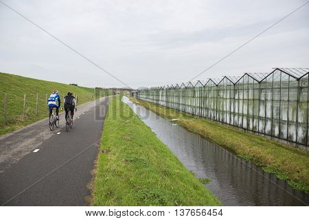 Two Cyclers on a Cycle Path alongside a Greenhouse in 'het Westland' the Netherlands