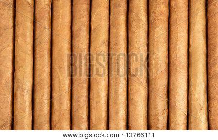 Row of Cuban cigars
