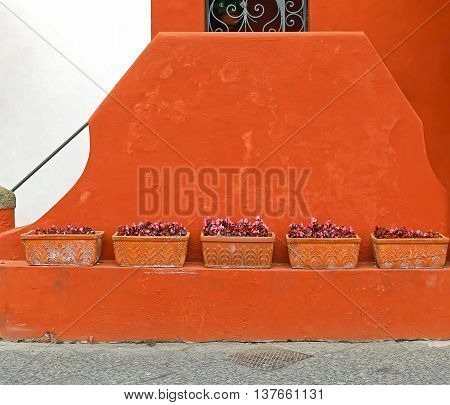 Terracotta Flower Pots at Adobe House Wall