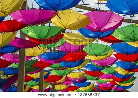 Umbrellas Forming Roof