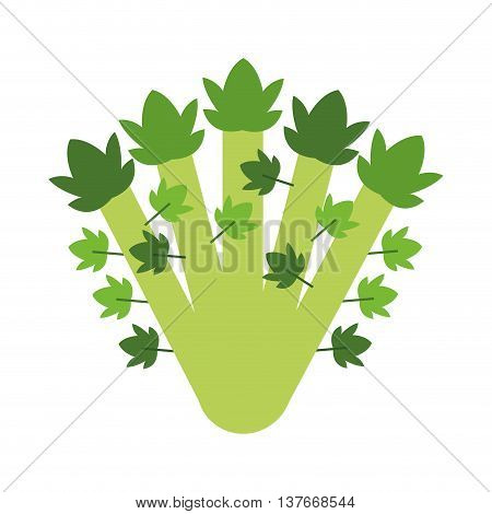 simple flat design whole celery icon vector illustration