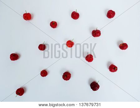 Red Prunus Avium composition art abstract background