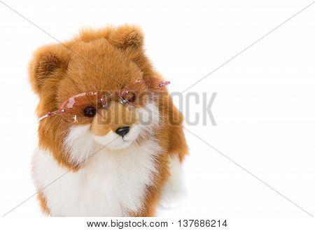 Dolly Dog toy wearing eyeglasses  on  white background
