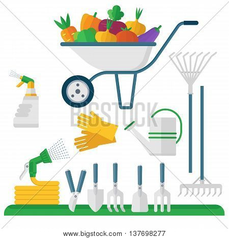 Wheelbarrow and garden equipment fresh vegetables. Objects isolated on background. Flat and cartoon vector illustration.