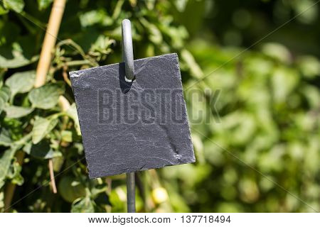 Blank slate garden label with greenery in background