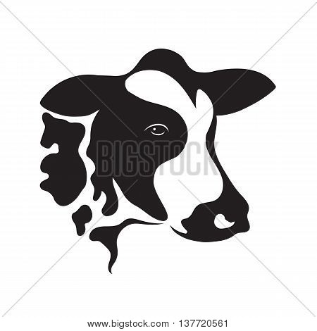 Vector of cow design on white background. Vector cow for your design.