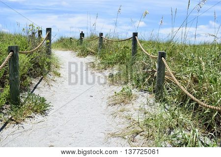 A sandy pathway to Turtle Beach in Siesta Keys, Florida.