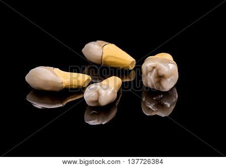 Prosthetic teeth on black background, studio shot