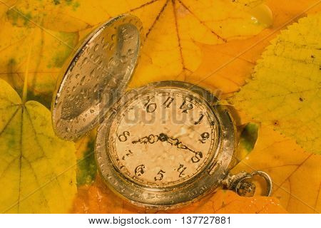 Antique watch with raindrops on the face against the background of autumn leaves (as an autumn or fall background) retro style