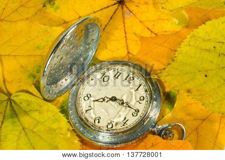 Antique watch with raindrops on the face against the background of autumn leaves (as an autumn or fall background)