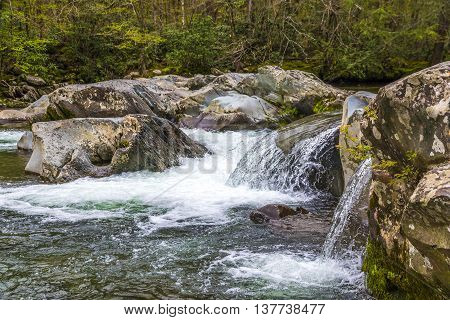 Forest creek. Water cascades over rocks in Great Smoky Mountains National Park.