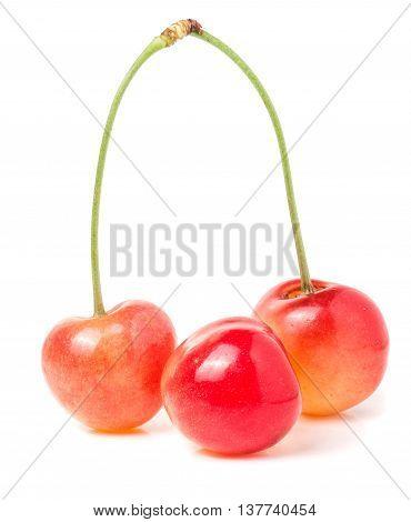 Three yellow cherry isolated on white background.