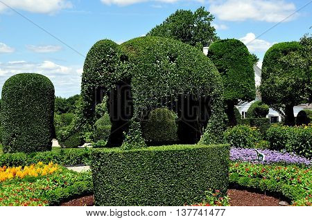Portsmouth Rhode Island - July 16 2015: An immense topiary elephant made of English Privet and clipped trees at Green Animals Topiary Gardens