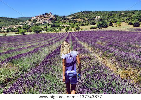 Young woman in a purple lavender field. Blonde girl in shorts and a white shirt walking in the lavender. Flower field in rows on a background of mountains.