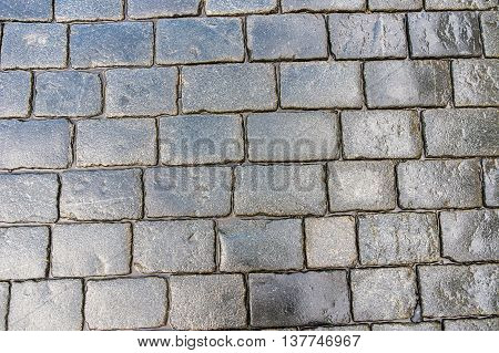 Grey Cobblestone Pavement After The Rain In The Czech Republic
