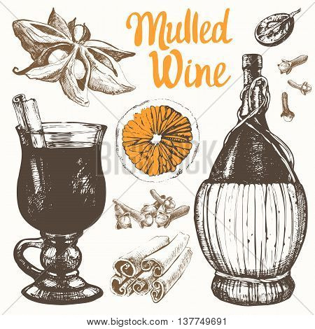 Vector illustration with mulled wine old wine bottle grape cinnamon orange.