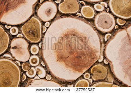 background in the form of slices of wood timber