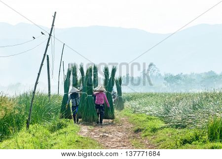 PHU YEN, Vietnam, June 18, 2016 Women's groups, rural Phu Yen, the burden rush, on the way home
