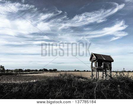 a landscape of a field farm vintage background farmland