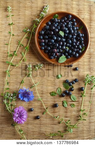 still life bilberry in a clay plate with thyme and cornflowers