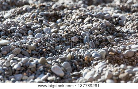 Pebble smooth, small, gravel, background on beach