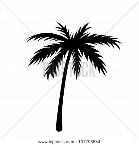 One palm tree outline. Black coconut tree silhouette isolated on white background. Symbol of tropical nature beach summer holiday travel. Floral exotic landscape. Natural design Vector illustration