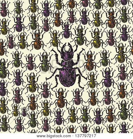 Vector illustrated seamless stag-beetle pattern. Colorful engraved stag-beetle on beige background. Seamless vector pattern with colored bugs