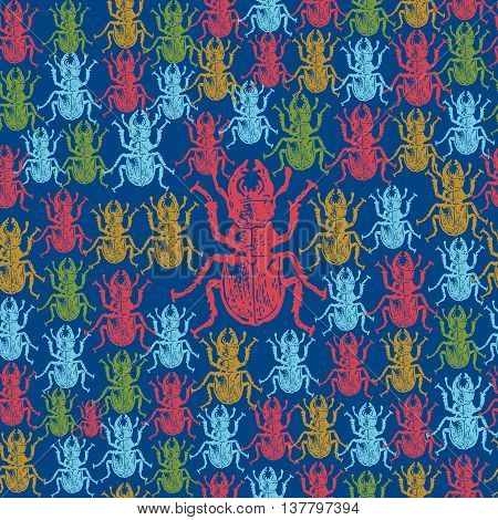 Vector illustrated seamless stag-beetle pattern. Colorful engraved stag-beetle on blue background