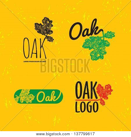 Vector colorful set with oak leaf and acorn. The oak leaf as main element of logotypes on yellow background. Engraves vector design graphic element emblem logo sign identity logotype