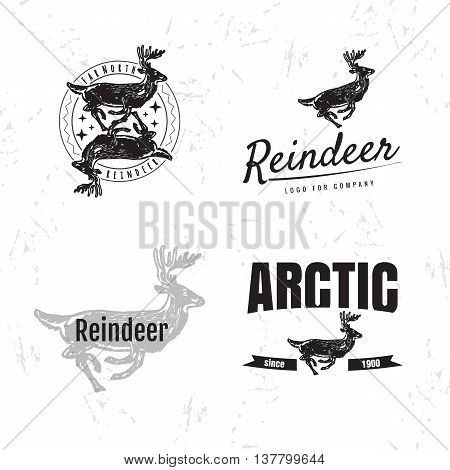 Vector black and white set with reindeer. The reindeer as main element of logotypes on white background. Engraves vector design graphic element emblem logo sign identity logotype