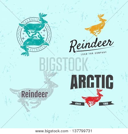 Vector colorful set with reindeer. The reindeer as main element of logotypes on light blue background. Engraves vector design graphic element emblem logo sign identity logotype