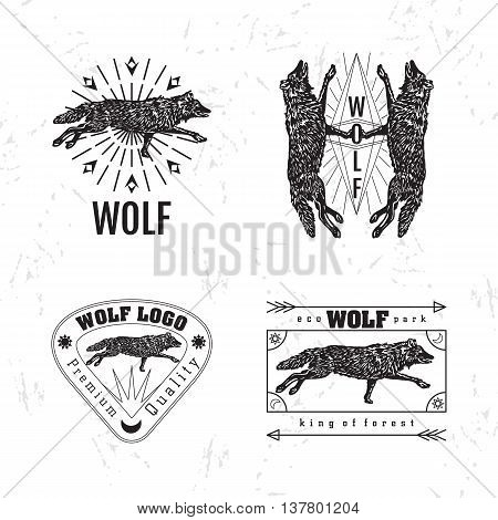 Vector black and white set with forest wolf. The wolf as main element of logotypes on white background. Engraves vector design graphic element emblem logo sign identity logotype