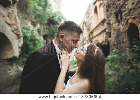 Beautiful romantic wedding couple of newlyweds hugging near old castle.