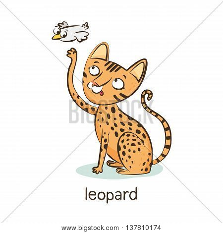 Leopard Cat. Cat Character Isolated On White