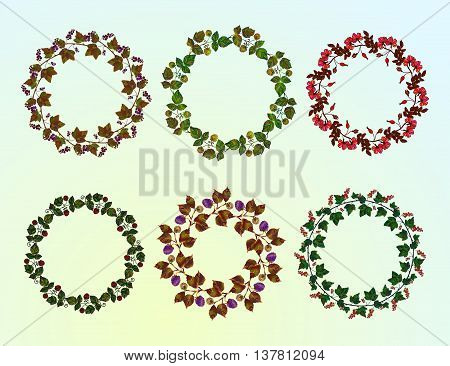 Set of berry frames - wreath. Currant , blackberry, raspberry, briar berries and leaves. Vector isolated objects on white background. Round colored frame collection of garden berries.