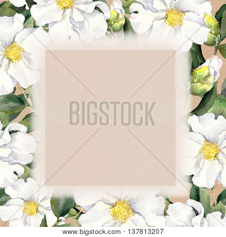 Watercolor floral frame with white flowers fringe on paper texture