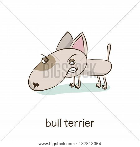 Bull Terrier. Dog Character Isolated On White