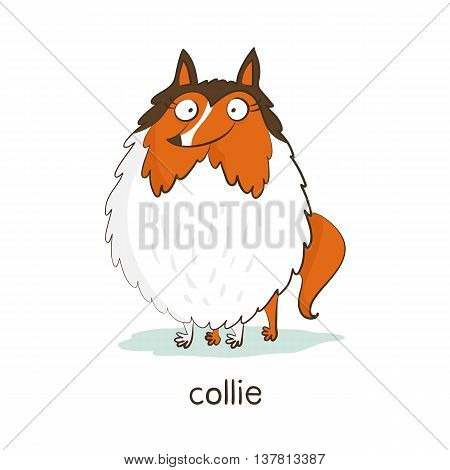 Collie. Dog Character Isolated On White
