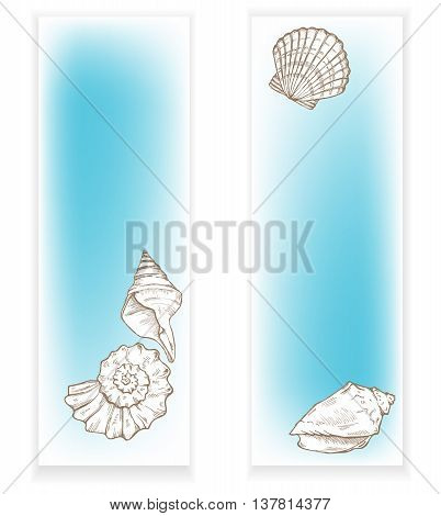 sea shells, underwater life, two banners vector illustration