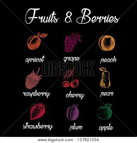 Fruits and berries. Eco food. Hand drawn apricot grape reach raspberry cherry pear strawberry plum apple. Sketch style fruits on black background. Vector illustration
