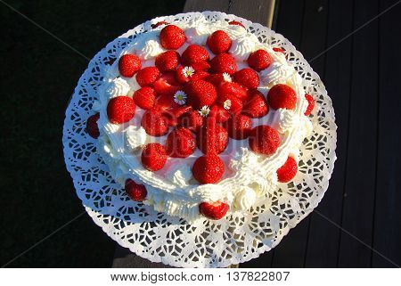 Delicious home made strawberry cake sunlit outdoors